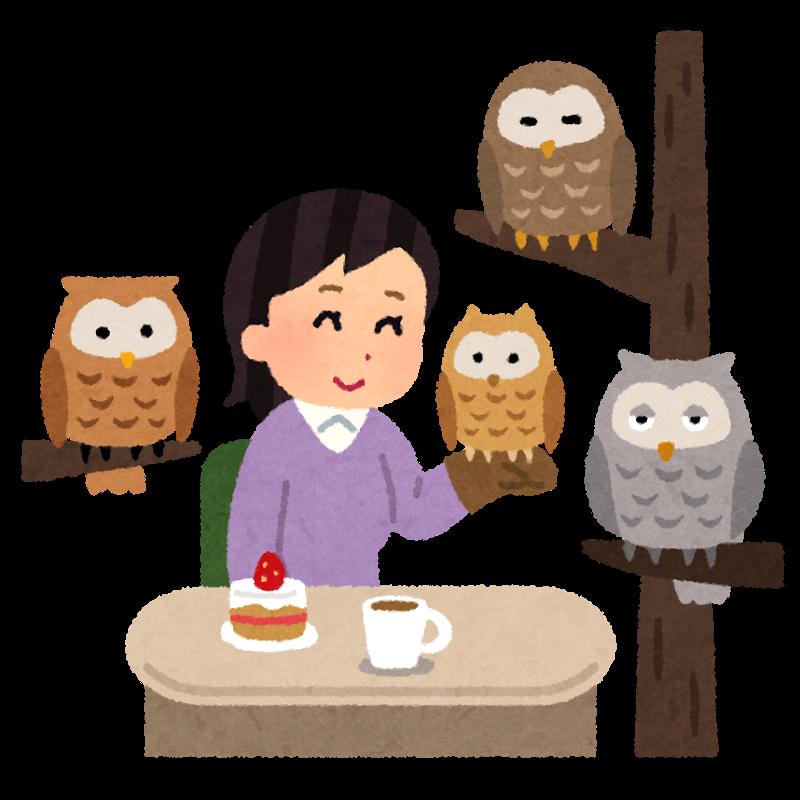 可愛いフクロウと戯れることができるカフェのイラスト 3つの顔を持つ男のブログ